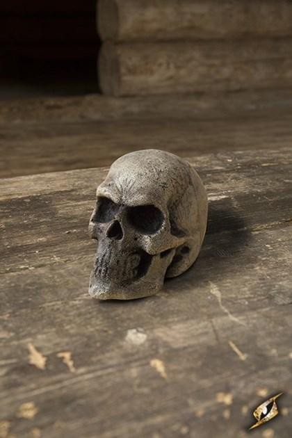 Small Skull - Knochen